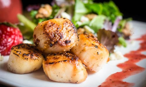 scallop salad best