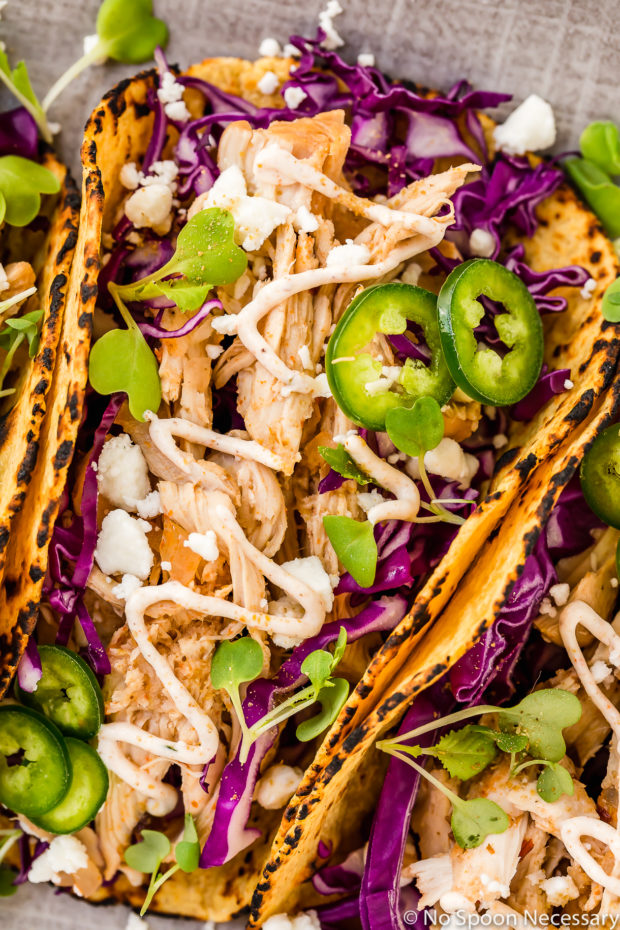 Overhead, up close shot of a a Slow Cooker Beer Braised Baja Chicken Taco on a gray platter garnished with jalapeno slices, micro greens and cotija cheese.