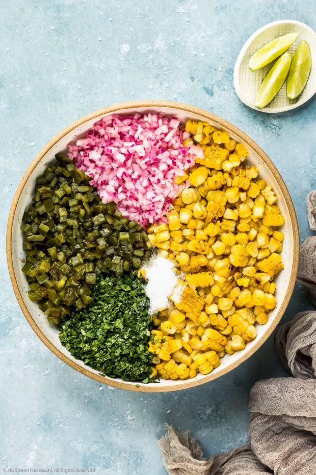 Overhead photo of roasted kernels of corn, diced marinated red onions, diced poblano peppers, diced jalapenos, chopped cilantro and kosher salt neatly organized by ingredient in a large mixing bowl - photo of step 7 of the sweet corn salsa recipe.