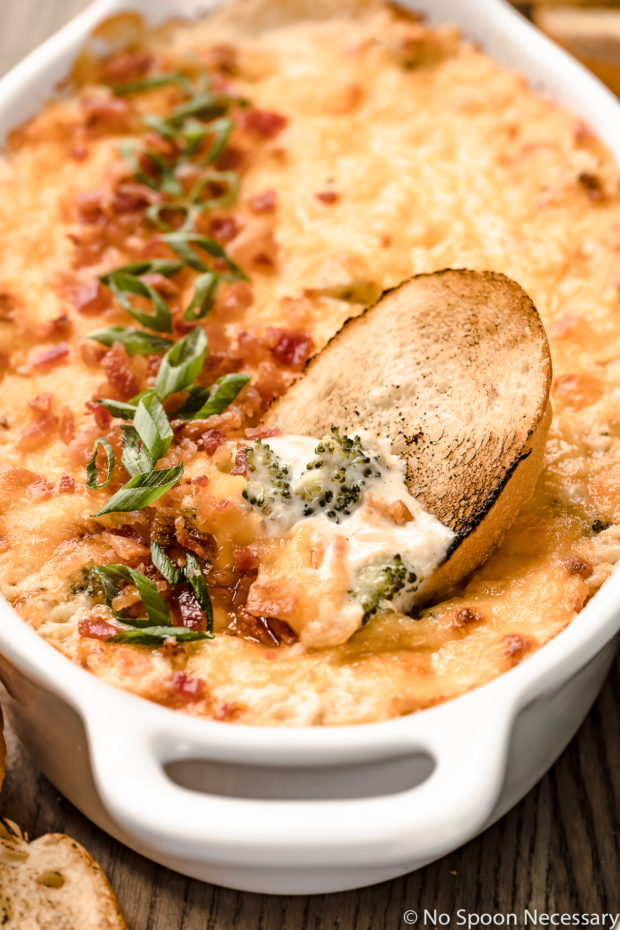 Angled, up close shot of Hot Cheesy Bacon Broccoli Dip in a white oval baking dish with a toasted slice of baguette inserted into the dip.
