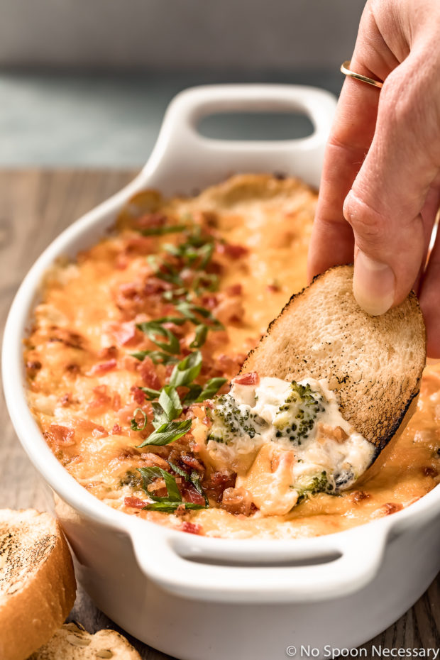 Angled shot of Hot Cheesy Bacon Broccoli Dip in a white oval baking dish with a hand holding a slice of toasted slice of baguette inserted into the dip.