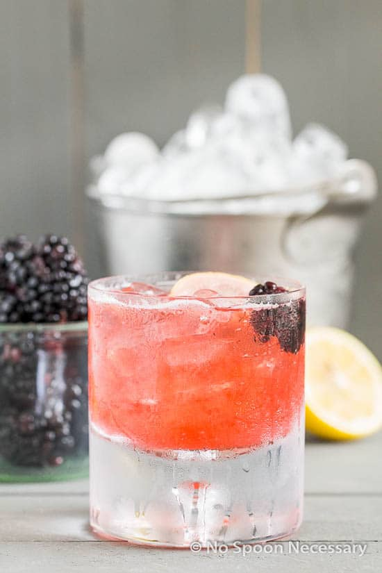Blackberry Bramble-186