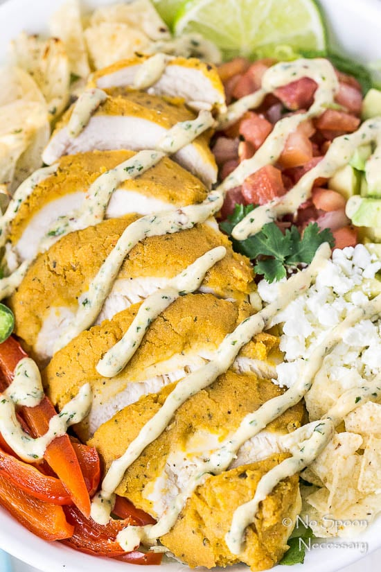 Fajita Hummus Crusted Chicken Salad-95