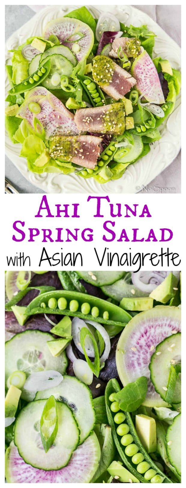 Asian Ahi Tuna & Watermelon Radish Spring Salad- long pin1