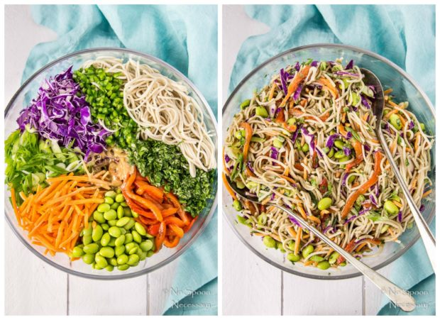 Thai Veggie Soba Noodle Bowls {with Ginger-Tahini Dressing} - No Spoon ...