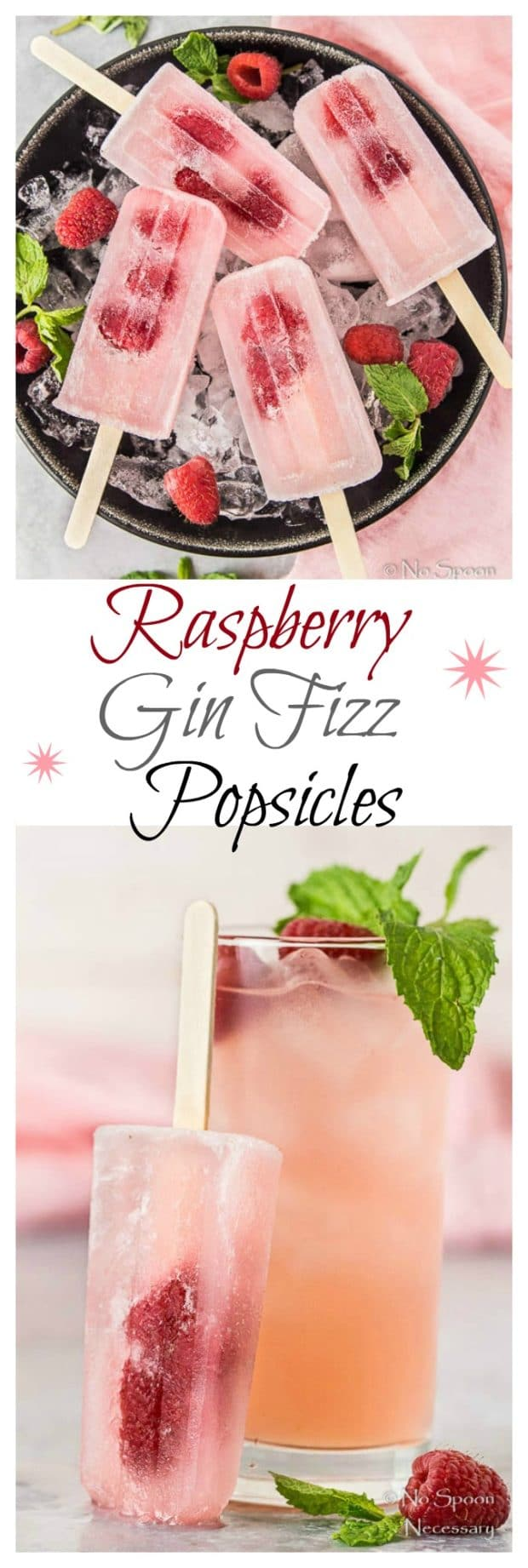 Raspberry Gin Fizz Popsicles - Poptails-7- long pin1