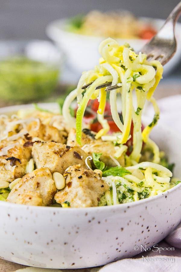 Basil Garlic Chicken & Summer Squash Noodles with Pesto-189