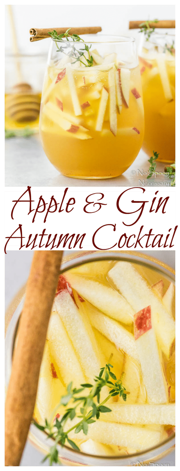 Apple & Gin Autumn Cocktail