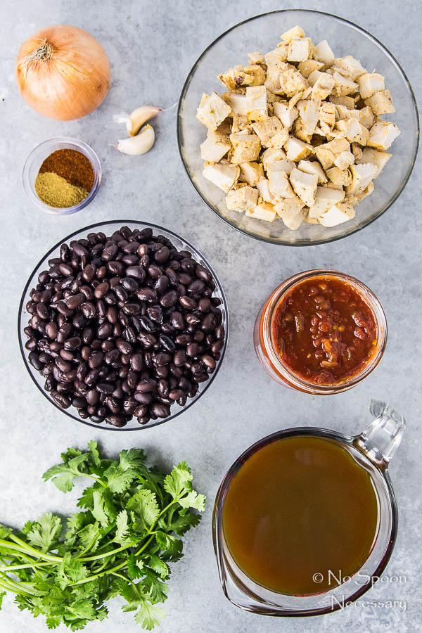 Nine Ingredient, Easy Chicken & Black Bean Soup {One Pot}