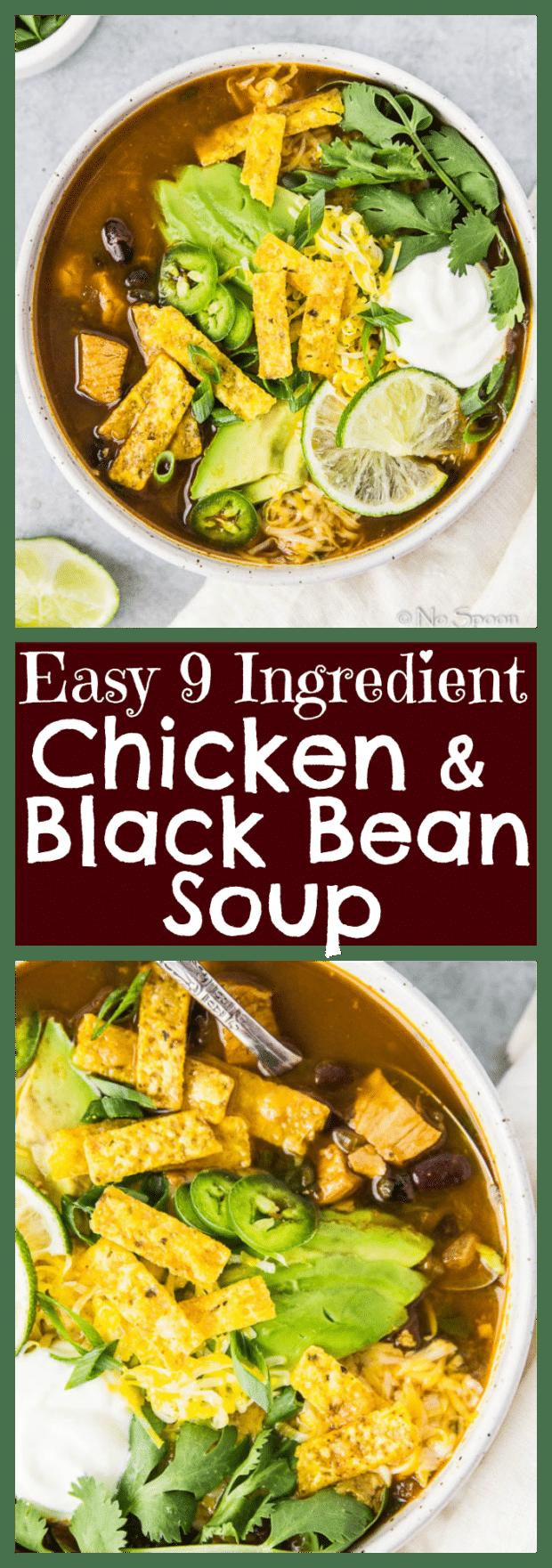 Nine Ingredient, Easy Chicken & Black Bean Soup {One Pot}