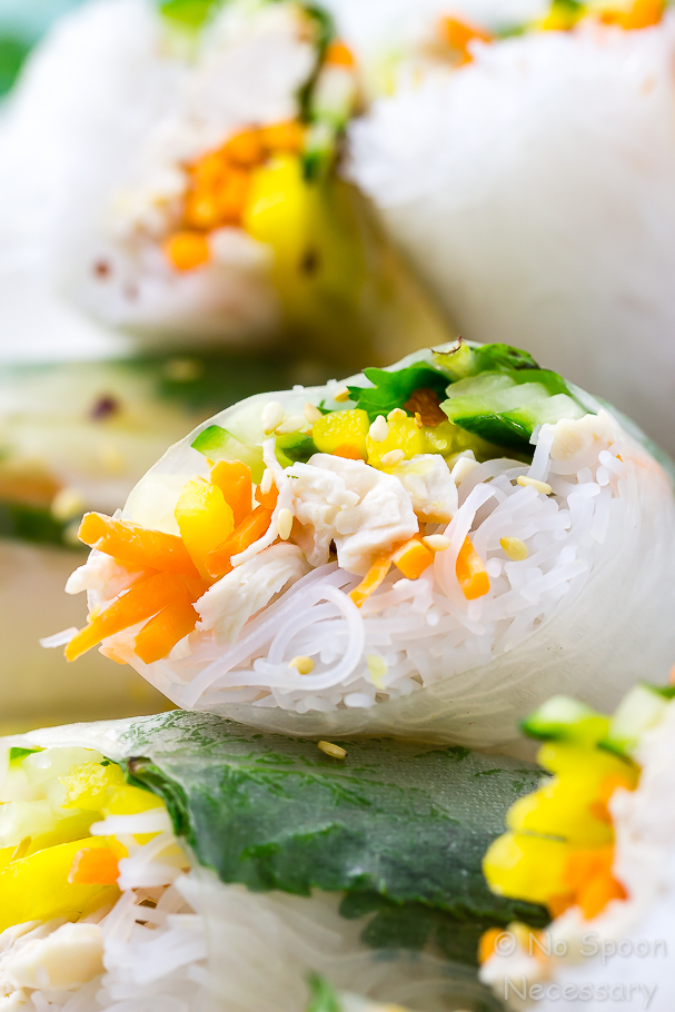 An extreme close up shot of a Coconut Chicken Mango Summer Roll filled with rice noodles, carrots, cucumber and cilantro