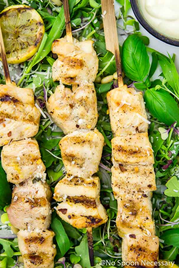 Overhead, up close shot of a Grilled Honey Lemon Chicken Skewer on a bed of Arugula and Basil Salad