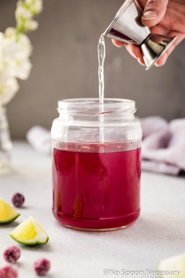 Cranberry Pomegranate Margarita No Spoon Necessary