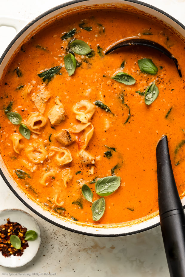 Overhead photo of a large white pot filled with chicken tortellini soup with a large black ladle inserted into the pot.