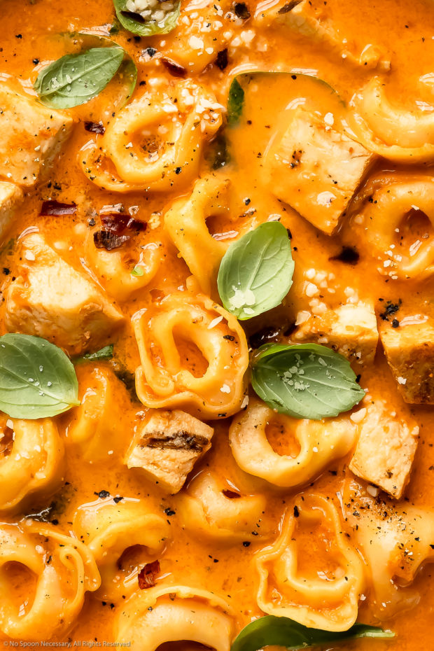 Overhead close-up photo of creamy chicken tomato tortellini soup garnished with fresh basil and grated parmesan cheese.
