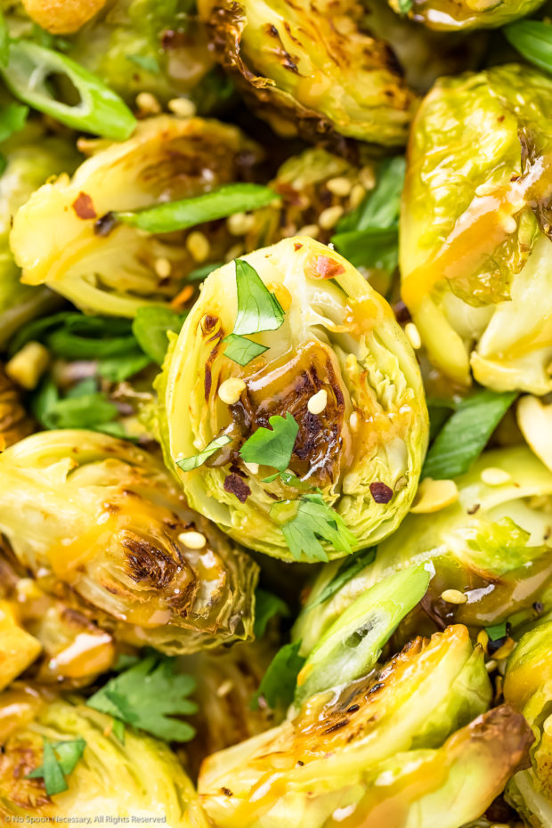 Overhead, extreme close-up shot of Roasted Asian Brussel Sprouts drizzled with peanut sauce and sprinkled with sesame seeds, chopped cilantro and sliced scallions.