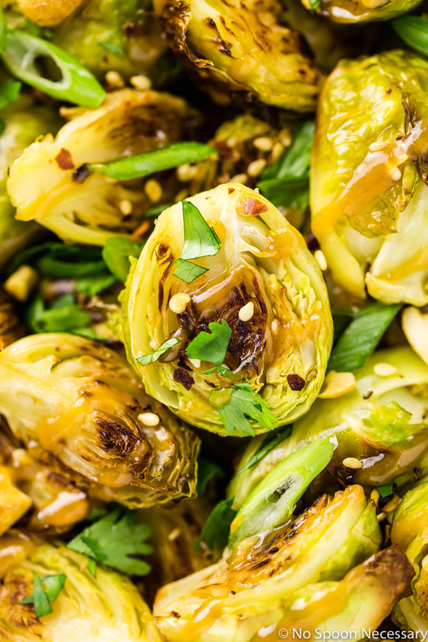 Overhead, extreme close-up shot of Roasted Asian Brussels Sprouts drizzled with peanut sauce and sprinkled with sesame seeds, chopped cilantro and sliced scallions.