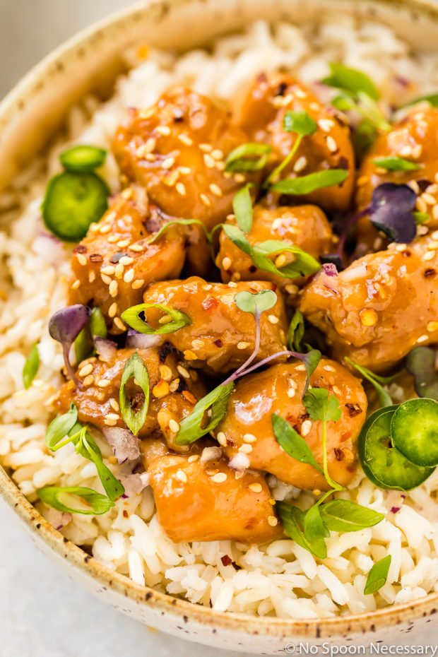 Overhead, up-close shot of a neutral colored bowl filled with rice, topped with Slow Cooker Bourbon Plum Chicken and garnished with sliced scallions, sliced jalapeños and fresh micro greens.