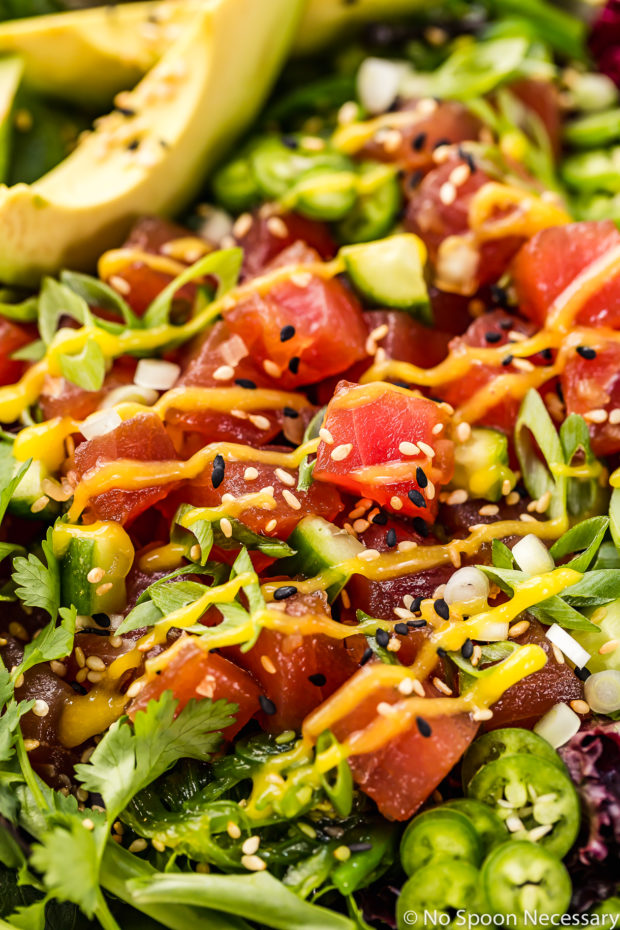Angled, up close shot of Avocado Mango Tuna Poke Salad Bowl.
