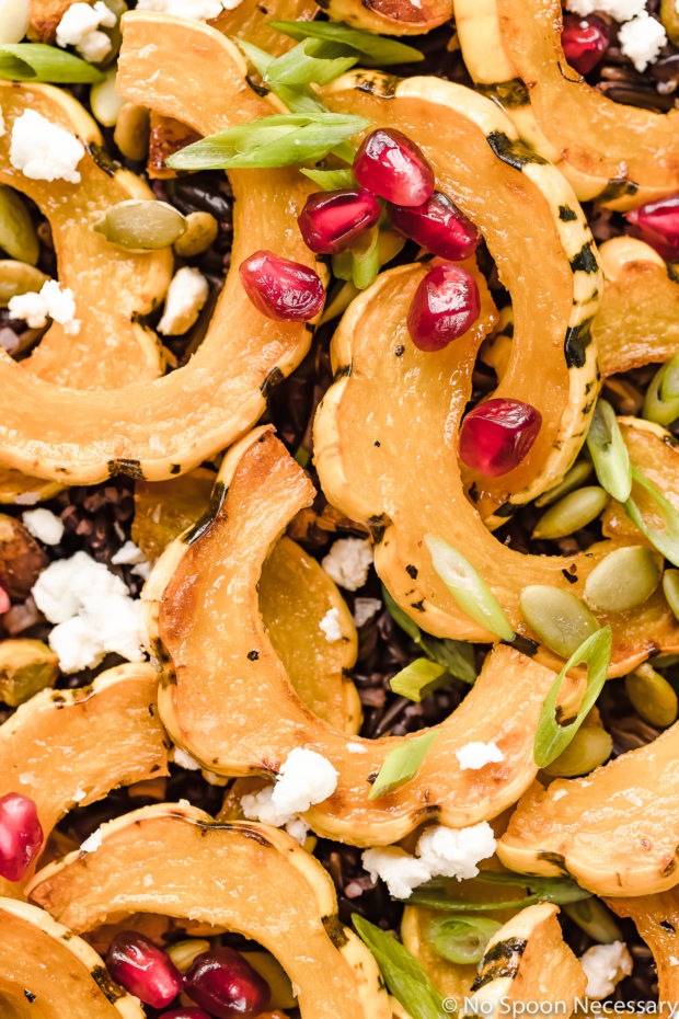 Overhead, up close shot of Roasted Delicata Squash Wild Rice Salad garnished with pomegranate arils, sliced scallions, goat cheese, pistachios and pumpkin seeds.