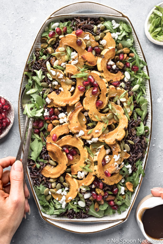 Overhead shot of Roasted Delicata Squash Wild Rice Salad on a white platter with a hand holding serving spoons inserted into the salad and another hand holding a small container of honey balsamic vinaigrette next to the platter.