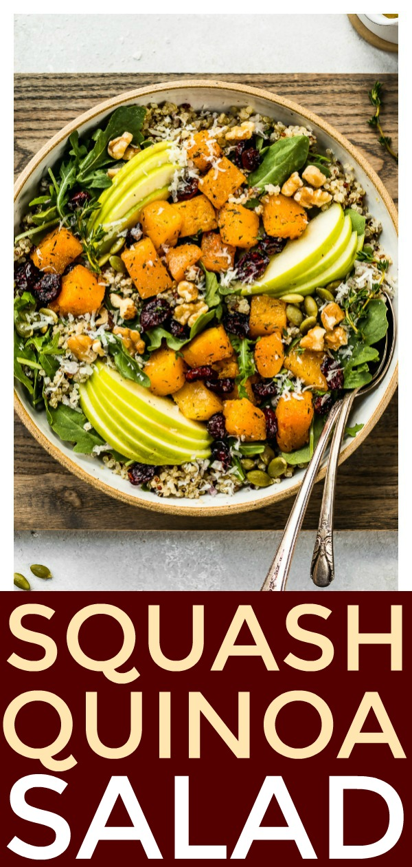 This Fall Butternut Squash Quinoa Salad is loaded with apples, cranberries, arugula, parmesan & a cider vinaigrette!  This healthy, filling salad is perfect for lunch, light dinners or holiday parties! #fall #squash #quinoa #salad #healthy #recipe #holiday #side