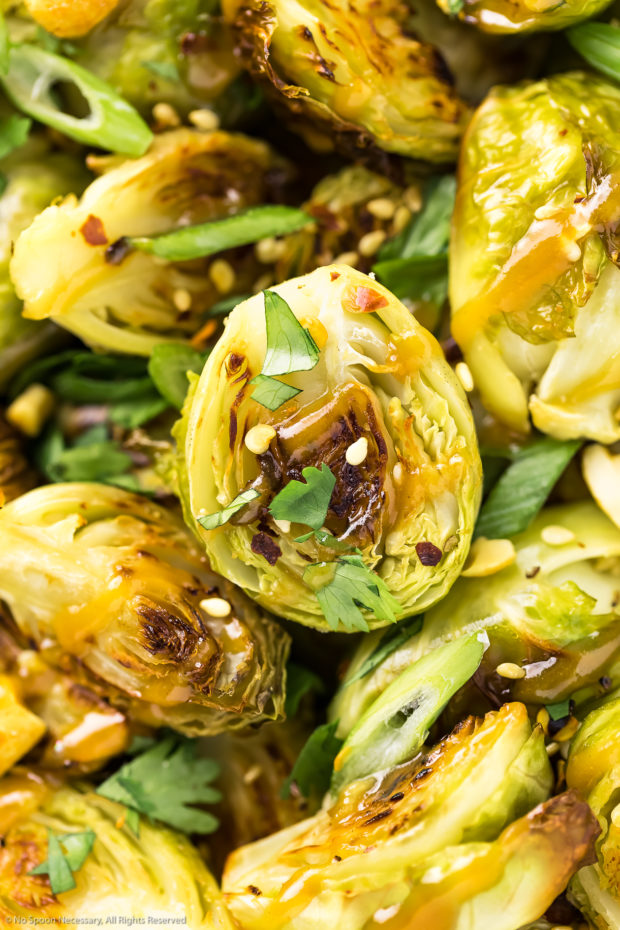 Overhead close-up photo of a Roasted Asian Brussel Sprout drizzled with peanut sauce and sprinkled with sesame seeds, chopped cilantro and sliced scallions.