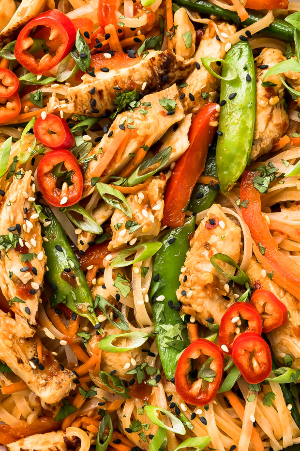 Overhead extreme close-up photo of stir fry vegetables and chicken with Asian noodles.