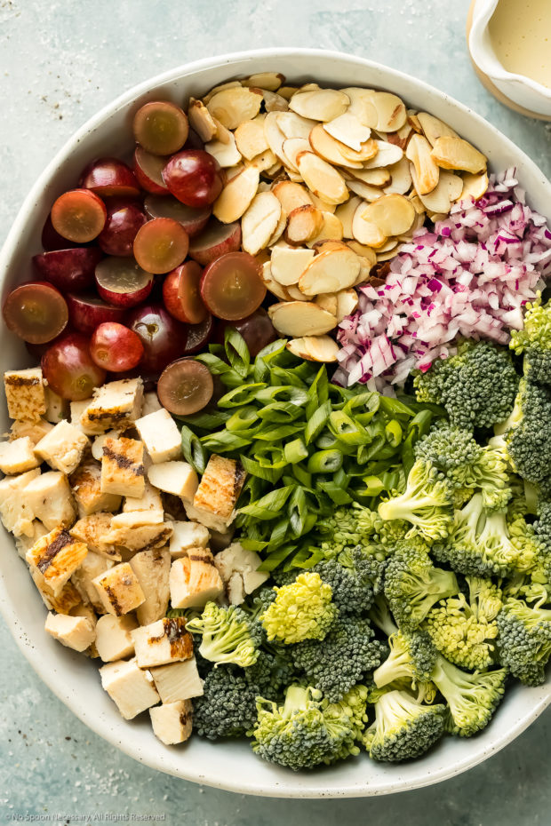 Overhead photo of all the ingredients in broccoli salad neatly organized by separate ingredients in a large mixing bowl.
