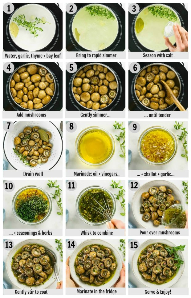 Overhead photo collage of how to make marinated mushrooms step by step with written instructions on each step.